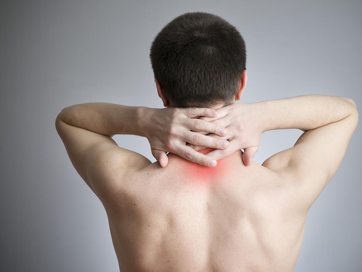 Fangoterapia 5 cure ASL - Superior - Stagione